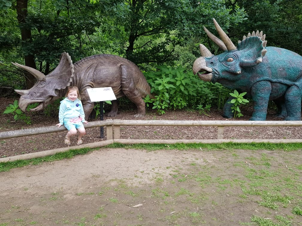 Wellington Country Park - Dinosaurs