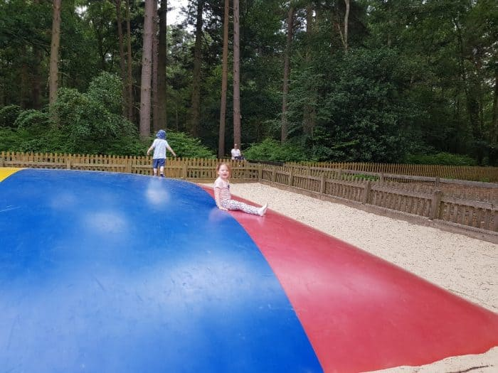 Wellington Country Park - Jumping Pillow