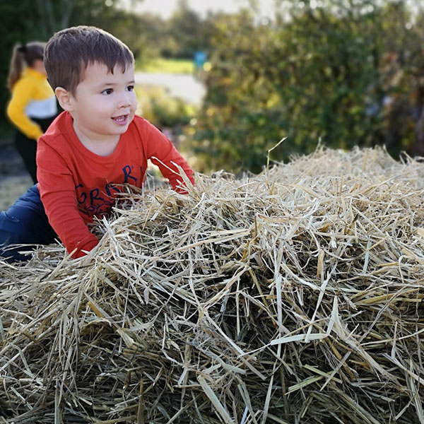 young boy playing in the hay