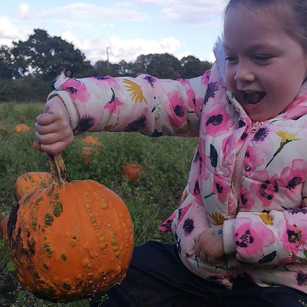 Warty Pumpkins at Sunnyfields Farm