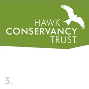 hawk conservancy trust logo